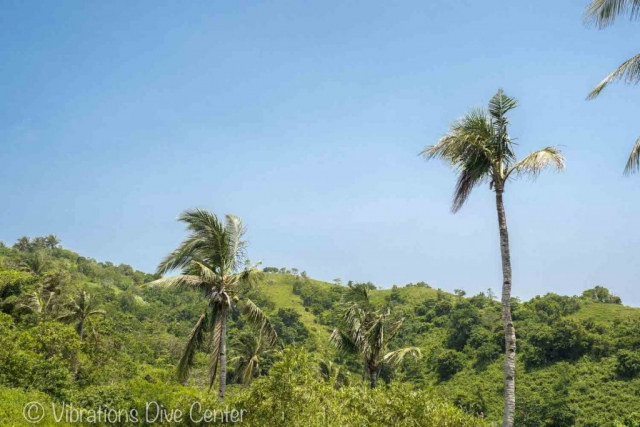 Hills of Carabao Island. Informations activities and things to do on Carabao.