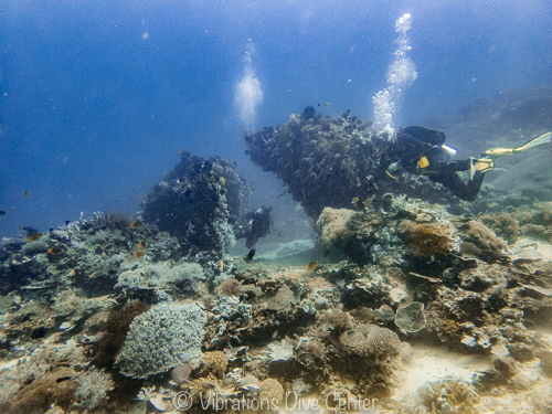arco black buoy, Vibrations Dive center, isla de carabao, romblon, filipinas.